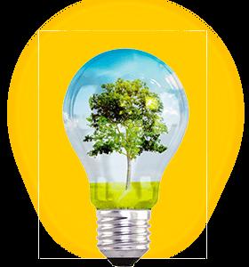 DINOPOL - eco bulb 2