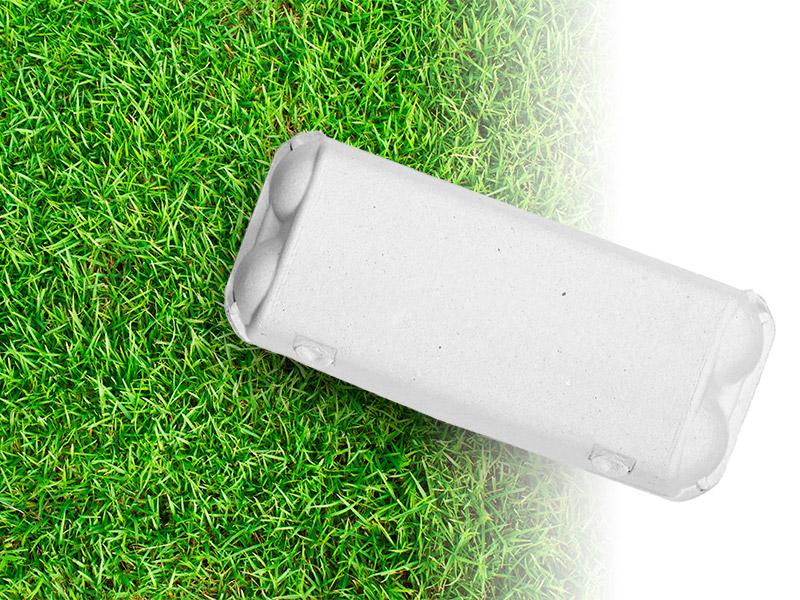 dinopol-koko10-grass