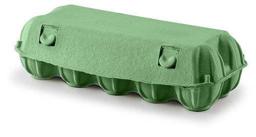 DINOPOL - KOKO-PAK 10 - green