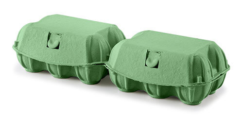 DINOPOL - KOKO-PAK 6 - green