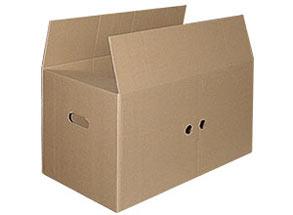 DINOPOL - karton zbiorczy 360
