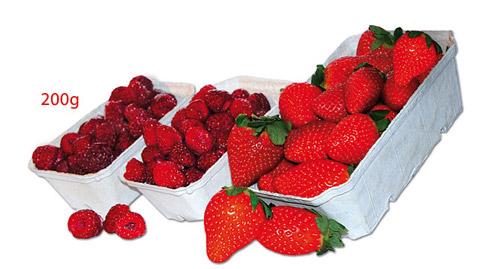 DINOPOL - opakowania na owoce, warzywa i grzyby 200g