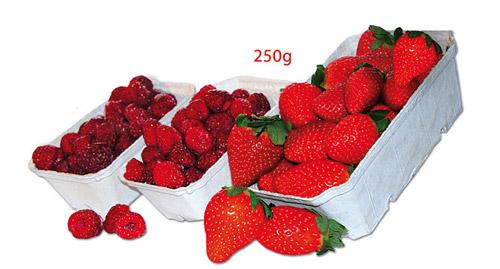 DINOPOL - opakowania na owoce, warzywa i grzyby 250g